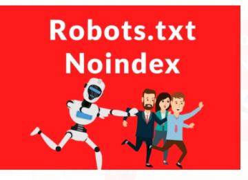 robots_txt_no_index